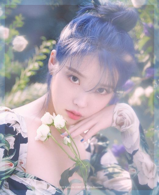 IU comeback in November ... Mini Album Released in one year [Official]