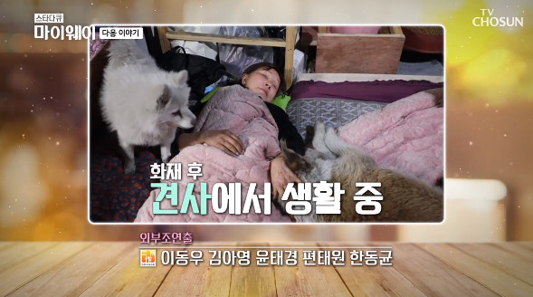 """'My Way' Lee Yong-nyeo lives in a dog after a fire at a stray dog shelter """"feeling of apology"""""""